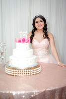 Amy's Quince Party